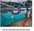 Nghiên cứu hoàn thiện đụt lưới mắt vuông cho nghề lưới kéo đáy khai thác hải sản ven bờ nhằm bảo vệ và phát triển nguồn lợi hải sản ven bờ